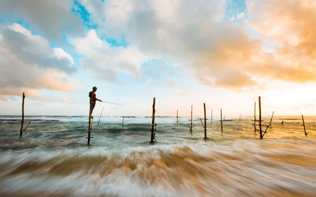 Meditation – Trust Life